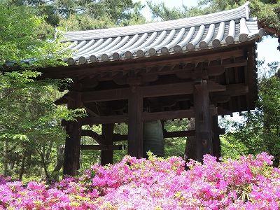 法善寺と大阪港夜景  更新です。