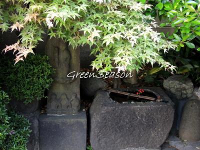 早稲田の龍泉院